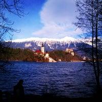 Photo prise au Blejsko Jezero / Lake Bled par Veronica A. le1/5/2013