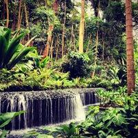 2/11/2013 tarihinde Martina M.ziyaretçi tarafından Singapore Botanic Gardens'de çekilen fotoğraf