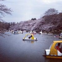 Foto scattata a Inokashira Park da yoshiken il 3/20/2013