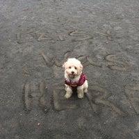 Photo taken at Baron Cameron Dog Park by Jen G. on 10/13/2013
