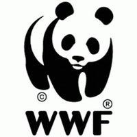 Photo taken at Всемирный фонд природы (WWF) by Катерина В. on 3/22/2013