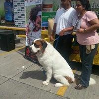 Photo taken at Mega Arca de Noé by Marlon C. on 10/6/2013