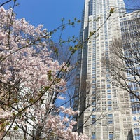 Photo taken at Shinjuku Chuo Park by s t. on 3/16/2013