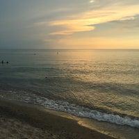 Foto Tirada No A Walnut Beach Park Por Lindy H Em 8