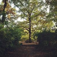 10/21/2012 tarihinde Roberto A.ziyaretçi tarafından Schillerpark'de çekilen fotoğraf