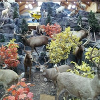 Photo taken at Cabela's by Adam A. on 10/20/2012
