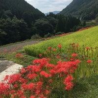 9/19/2018에 Michiyo S.님이 番所棚田에서 찍은 사진
