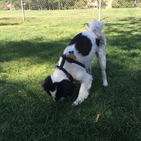 Photo taken at Laguna Canyon Dog Park by Mike R. on 5/10/2015