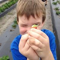 Photo taken at Pappy's Strawberry Patch by Jennifer M. on 1/3/2013
