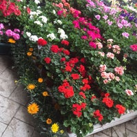 Photo taken at Ada Garden Peyzaj by Sefanur I. on 5/6/2016
