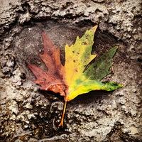 10/22/2012 tarihinde A.Fırat Ö.ziyaretçi tarafından Karaağaç'de çekilen fotoğraf