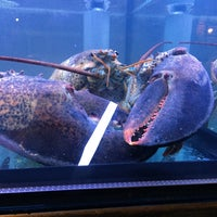 Photo taken at Burger & Lobster by Yee Ting W. on 1/31/2015