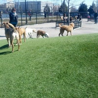 Photo taken at Locust Point Dog Park by Frank D. on 3/9/2013