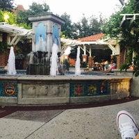 Photo taken at Winter Garden Village Fountain by Michelle C. on 8/26/2016