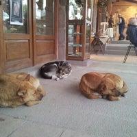 4/14/2013 tarihinde Sinan S.ziyaretçi tarafından Kibele Kale'de çekilen fotoğraf