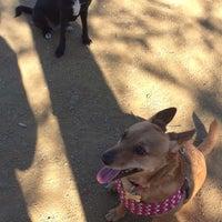 Photo taken at Newport Beach Dog Park by Adam S. on 2/15/2016
