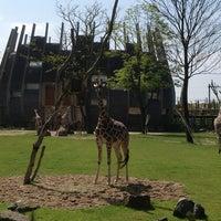 Photo taken at Giraffen by Boris B. on 5/19/2013