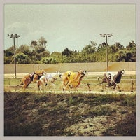 Photo taken at Melbourne Greyhound Park by Will C. on 4/3/2013