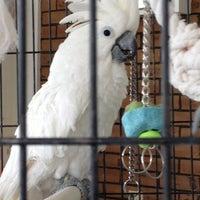 Photo taken at Shenandoah Animal Clinic by Robert C. on 11/12/2012