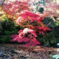 11/14/2012にRyo M.が武蔵陵墓地 (多摩御陵)で撮った写真