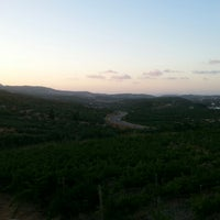 Photo taken at Domaine Paterianakis by Nicky P. on 8/18/2014