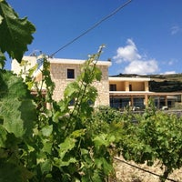Photo taken at Domaine Paterianakis by Nicky P. on 6/1/2014