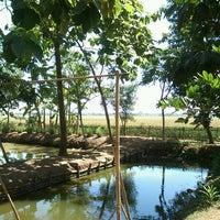 Photo taken at Jl Pantura Perbatasan Subang_Karawang by Fijar z. on 8/24/2013