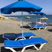 Снимок сделан в Venus Beach пользователем Maria 9/18/2015