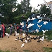 Photo taken at Средняя школа №28 by Anastasia R. on 6/18/2014
