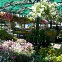 Photo taken at Westborn Flower Market by Rick F. on 5/26/2013