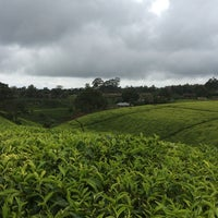 Photo taken at Kiembethu Tea Farm by Samir D. on 4/11/2014