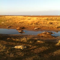 Photo taken at Donna Nook Beach by Andrew F. on 11/15/2012