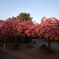 Photo taken at Britzer Garten by Андрей И. on 5/5/2013