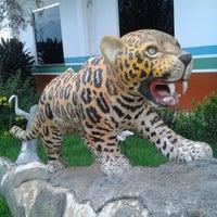 Photo taken at Manaquiri, Amazonas by Mack P. on 12/13/2013