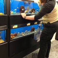 Photo taken at Petco by Batman on 11/4/2012