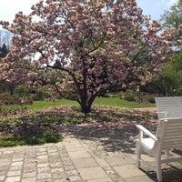 Photo taken at Botanischer Garten by Ulf W. on 4/28/2013