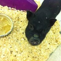 Photo taken at J&K's Pet Store by Thomas C. on 9/17/2012