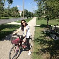 7/21/2013 tarihinde Yasemin Ç.ziyaretçi tarafından Kırkpınar Yürüyüş Yolu'de çekilen fotoğraf