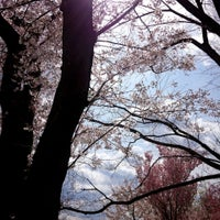 Photo taken at 東山動植物園 お花畑 by fuwa_neko on 4/6/2014