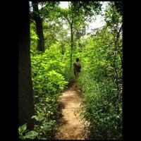 Photo taken at Barton Creek Greenbelt East by Alberto C. on 7/20/2014