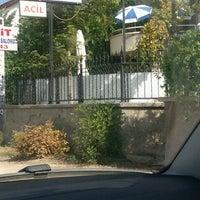 Das Foto wurde bei veta veteriner von Basak am 10/12/2012 aufgenommen