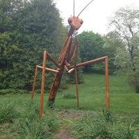 Снимок сделан в Morris Arboretum пользователем Catie M. 5/11/2013
