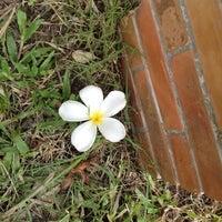 11/4/2012에 SuperBow*님이 สวนนายดำ에서 찍은 사진