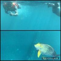 Photo taken at Liberty Dive Resort Tulamben by Brian P. on 6/9/2018