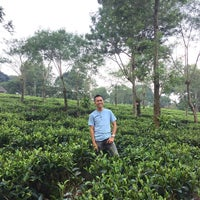 Photo taken at Kebun Teh Wonosari by Herrizious on 4/20/2016