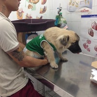 Photo taken at Fil-Chinese Group Of Animal Clinic by Jovie V. on 1/10/2014