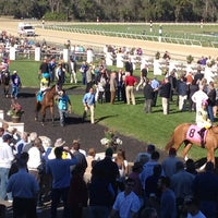 Photo taken at Tampa Bay Downs by Deana A. on 3/9/2013