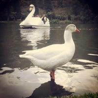 Foto tirada no(a) Lago Negro por Ronan d. em 5/25/2013