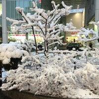 Photo taken at 岐阜駅前中央商店街 by funnypochi 黒. on 1/26/2013