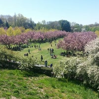 ... Photo Taken At Brooklyn Botanic Garden By Terri N. On 5/4/2013 ...